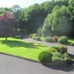 Front Garden 03