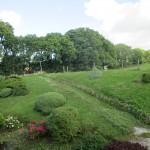 Back Garden 01