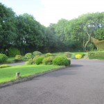 Front Garden 02