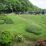 Back Garden 03