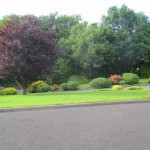 Front Garden 05